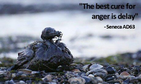 anger delay
